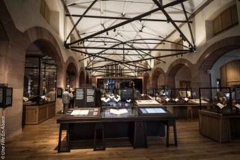 La Bibliothèque Humaniste de Selestat - Photo Céline Schnell Une Fille En Alsace