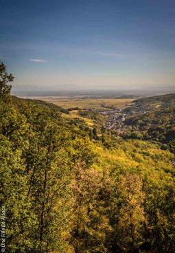 randonnee-chateau-spesbourg-andlau©Celine-Schnell-Une-Fille-En-Alsace-5