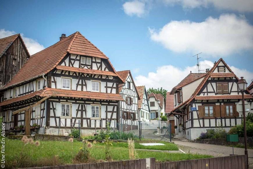 betschdorf©Celine-Schnell-Une-Fille-En-Alsace-2019