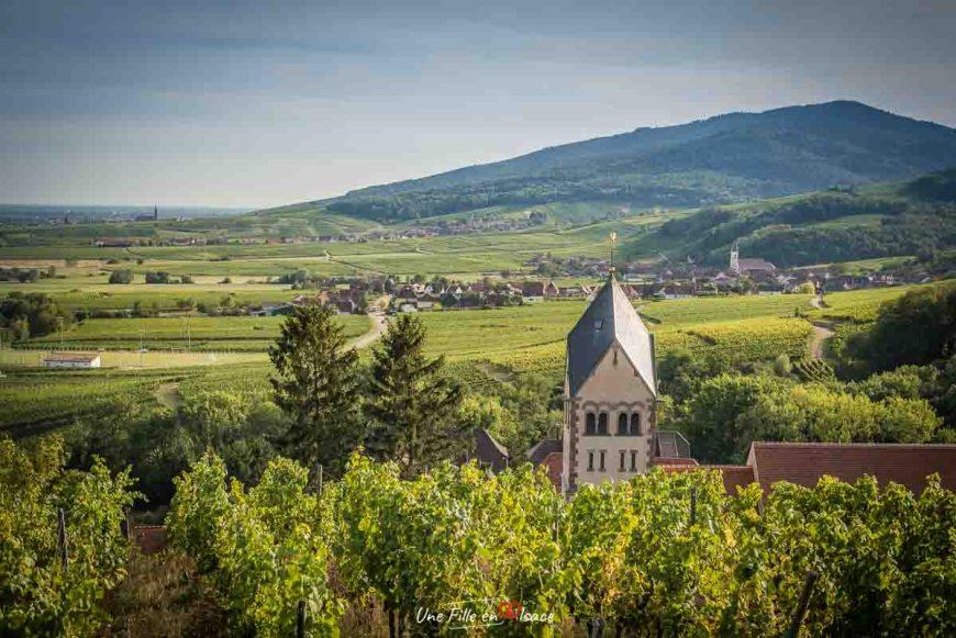 veloroute-vignoble-itterswiller©Celine-Schnell-Une-Fille-En-Alsace-2019-4