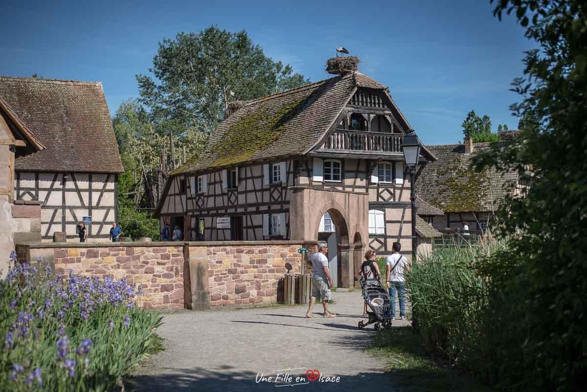 ecomusee d'alsace-ungersheim©Celine-Schnell-Une-Fille-En-Alsace-2019