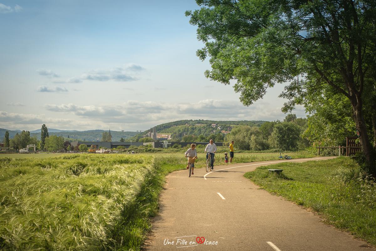velo-pays-de-sainte-odile-obernai-niedernai@Céline-Schnell-Une-Fille-En-Alsace-2020