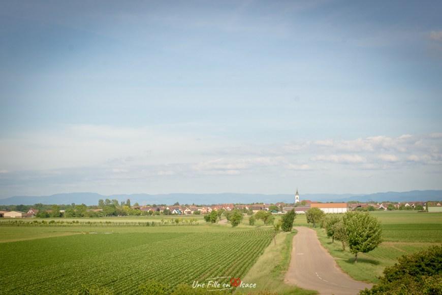 velo-pays-de-sainte-odile-krautergersheim@Céline-Schnell-Une-Fille-En-Alsace-2020