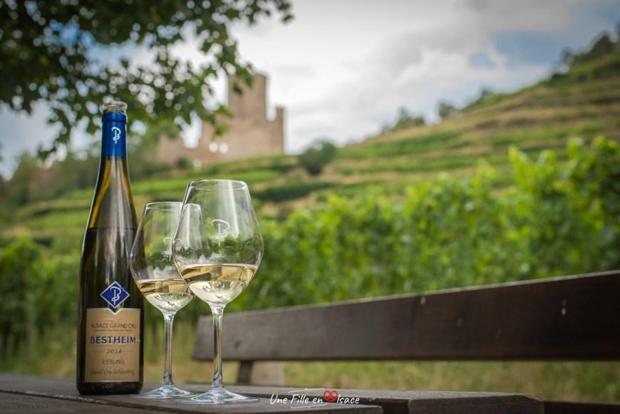 Riesling Grand Cru Schlossberg Bestheim Kaysersberg@Céline-Schnell-Une-Fille-En-Alsace-2020