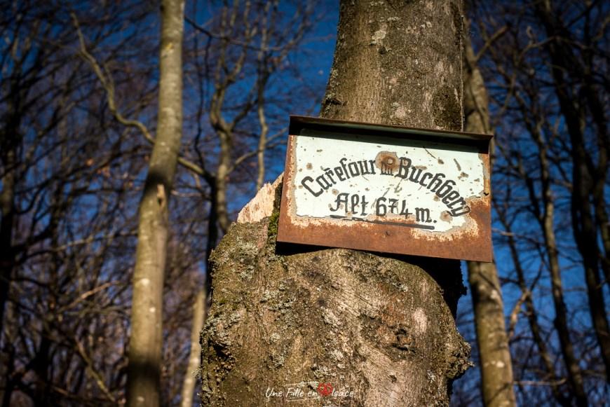 carrefour du Buchberg Grendelbruch@Céline-Schnell-Une-Fille-En-Alsace-2021
