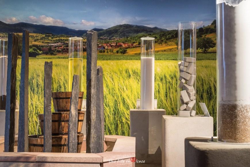 fabrique-bretzel-boehli@Céline-Schnell-Une-Fille-En-Alsace-2021