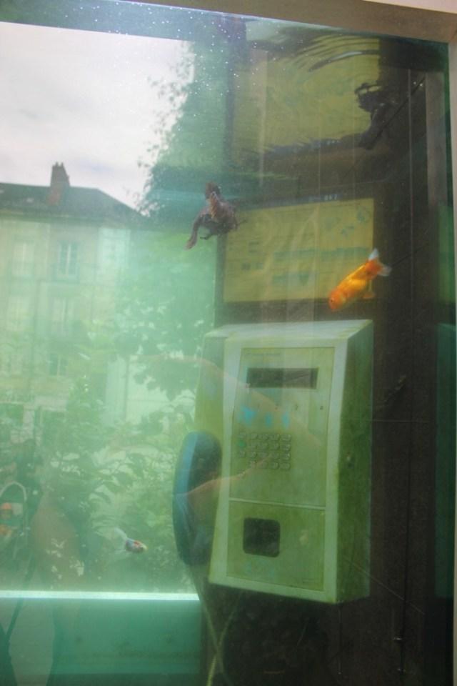 cabine-aquarium-nantes