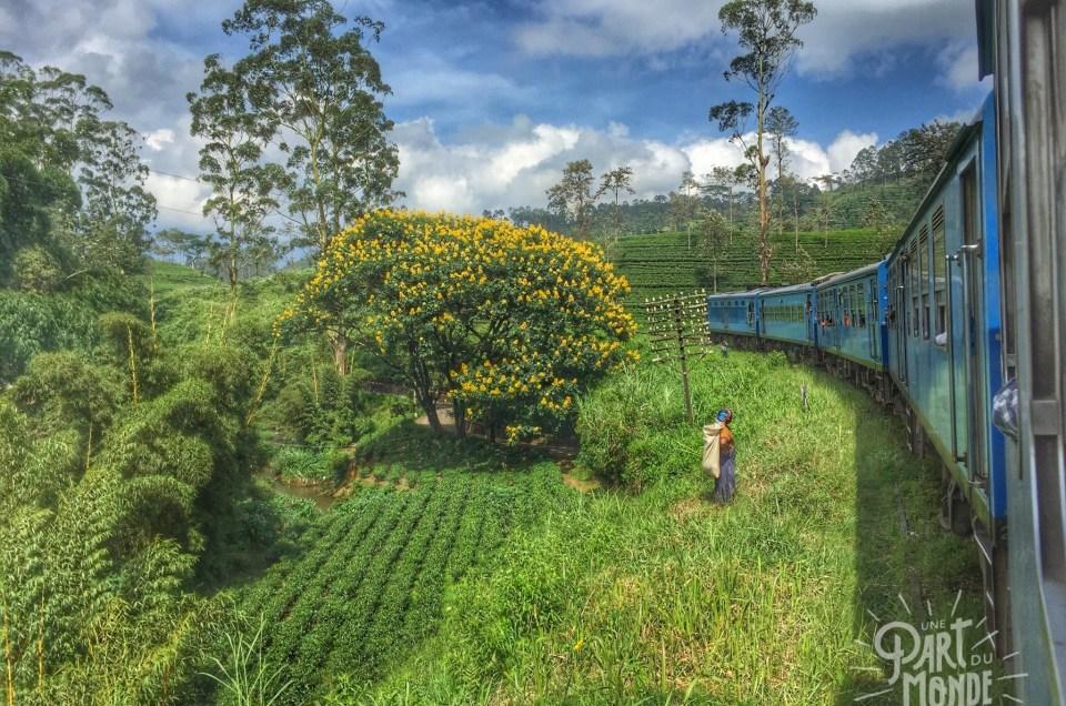 Sri Lanka : Itinéraire et mode de transport
