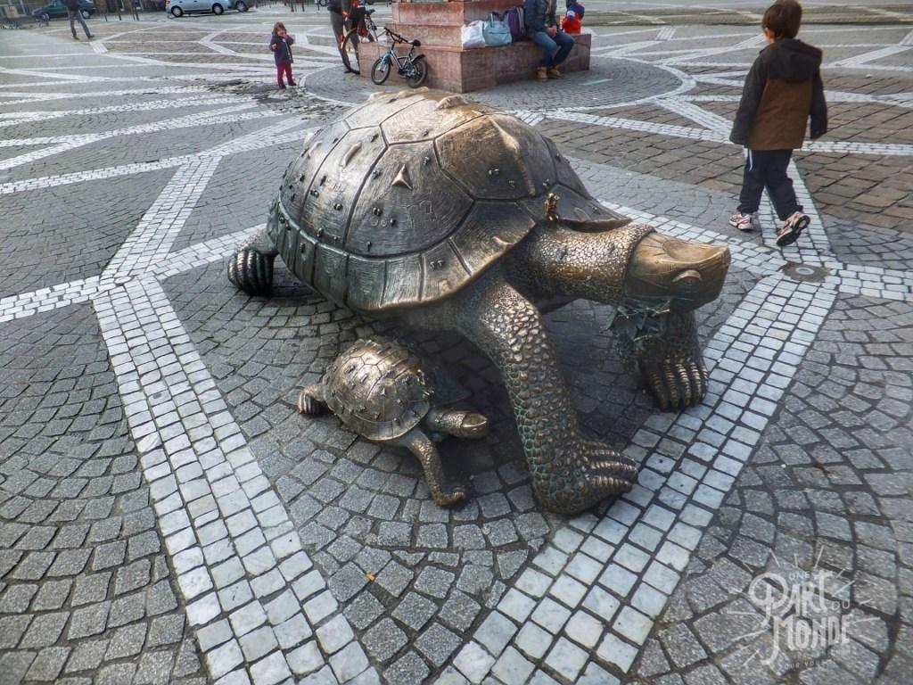 tortues-bordeaux