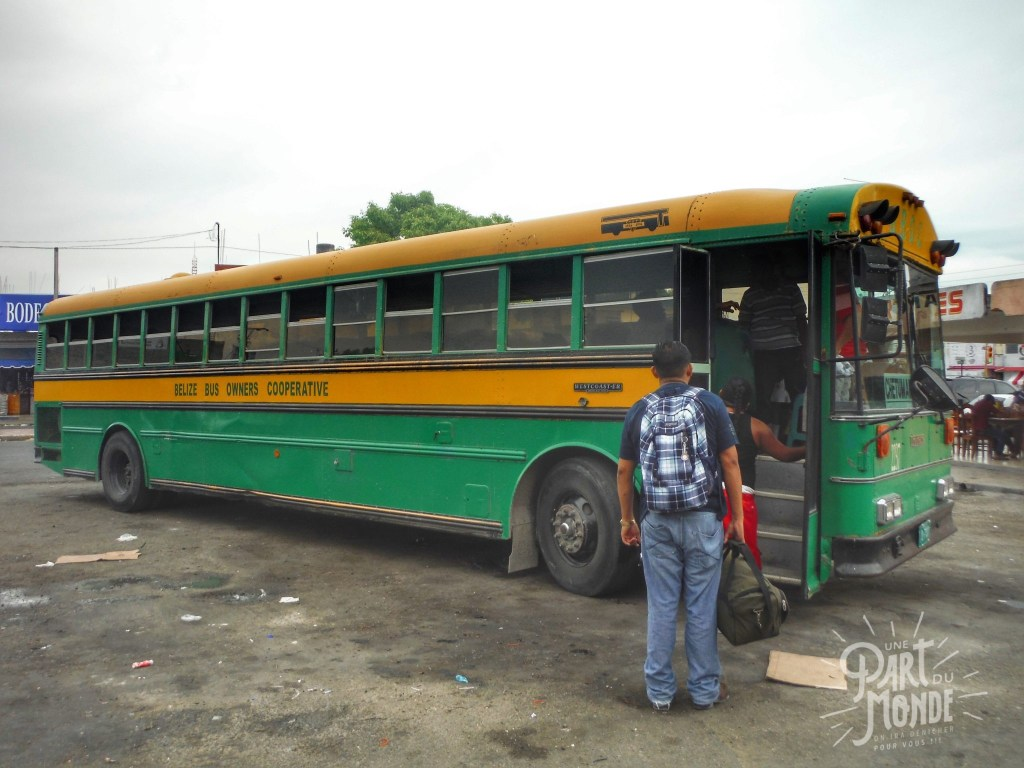 belize bus