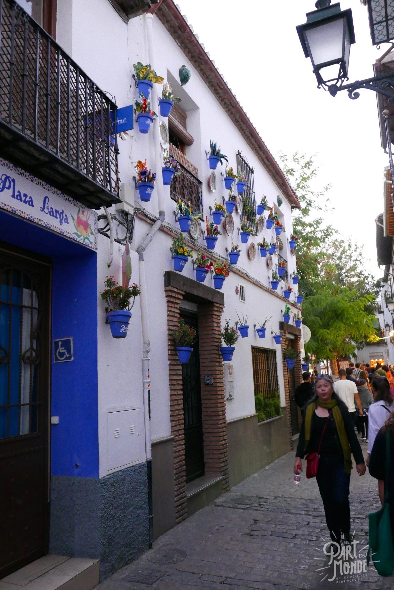 rues grenade pot de fleurs bleus