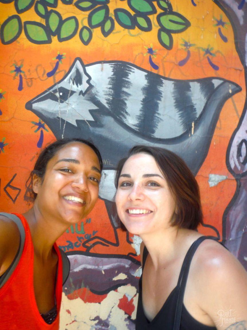 street art barrio brasil krystel et lisa santiago du chili