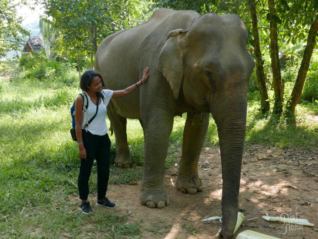 krystel et elephant elephant conservation center