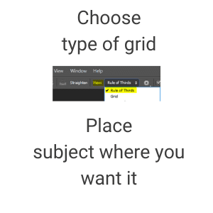 Photo editing tips - Grids Photoshop