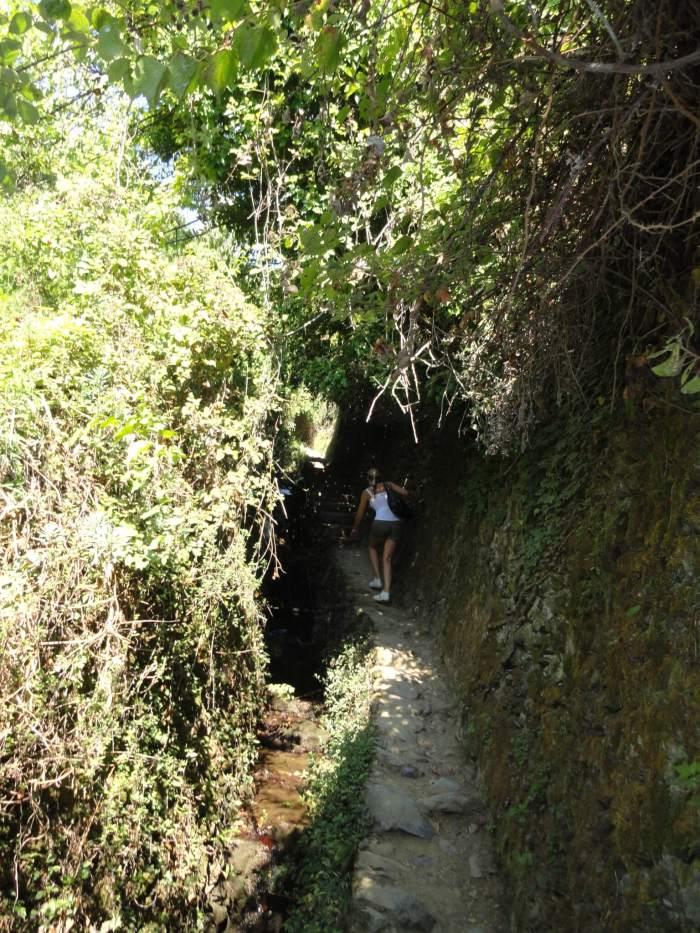 Steile trappen langs het ravijn in Cinque Terre