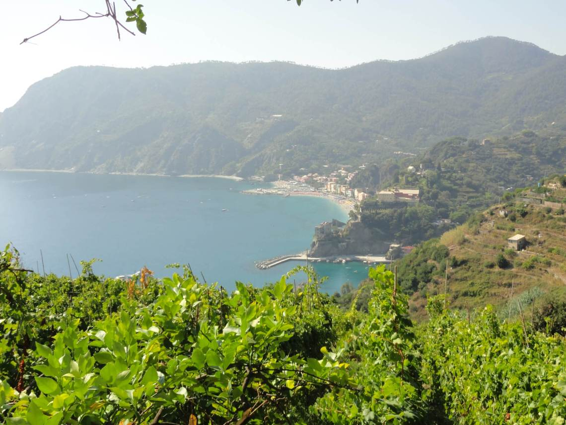 Zicht van boven op Monterosso, bergen en wijnranken