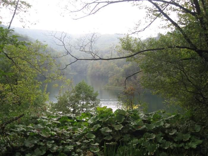 Mistflarden in natuurpark Plitvice