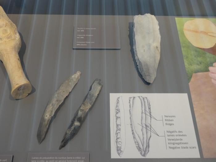 Prehistorische gereedschappen liggen in vitrine uitgestald in bezoekerscentrum Spiennes