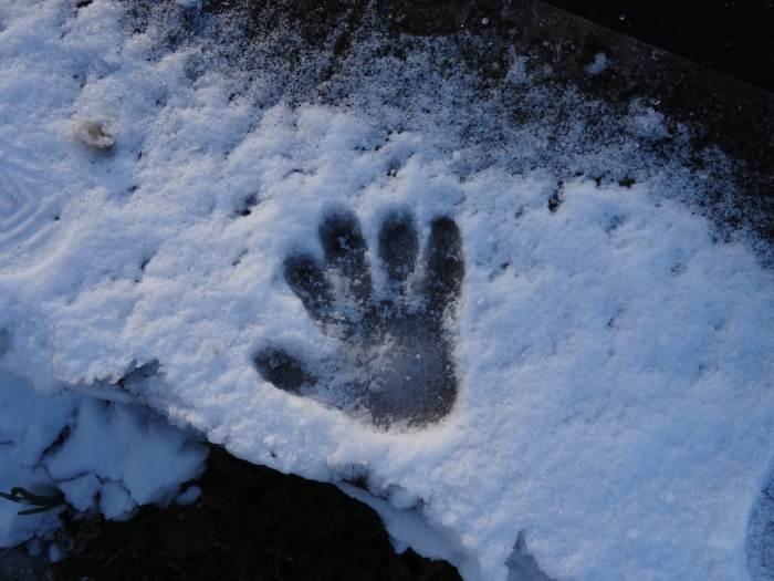 Een helpende hand in de sneeuw