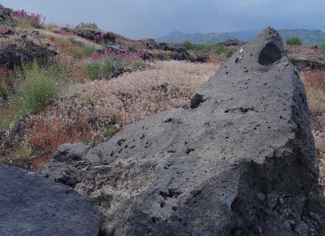 Puntige lavasteen tussen wilderige begroeiing