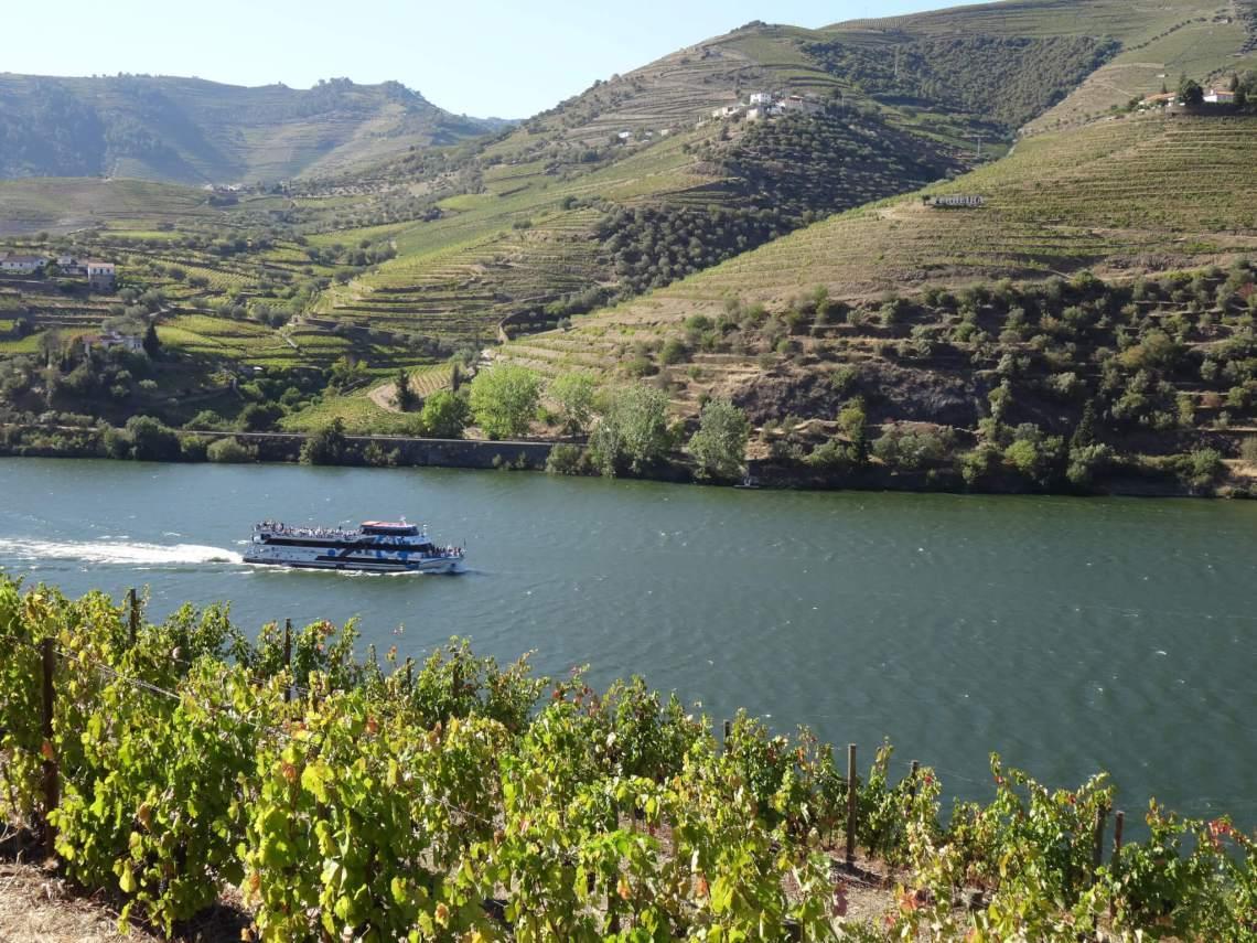 Toeristenboot vaart tussen bergen wijn