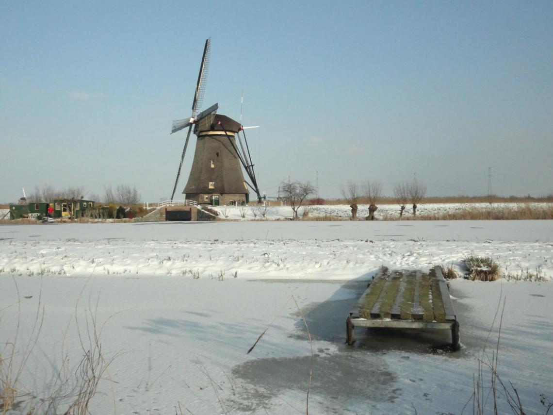 Een houten vlonder, knotwilgen en een molen in een sneeuw bedekt landschap