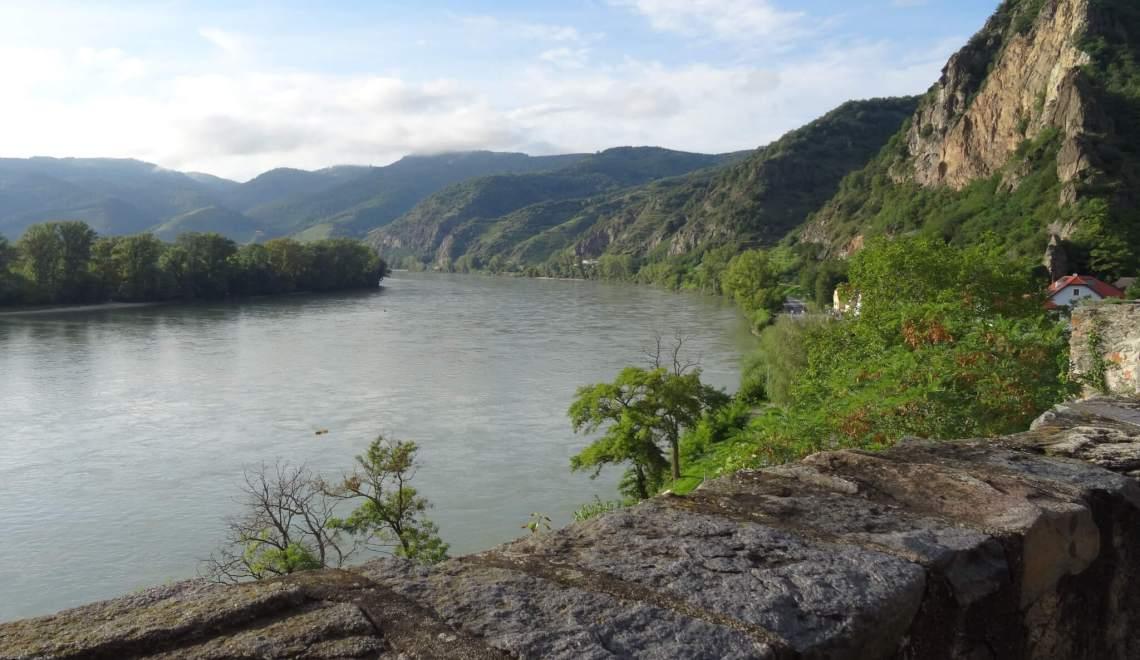 Melk en wijn leiden in de Wachau naar de poorten van het Paradijs