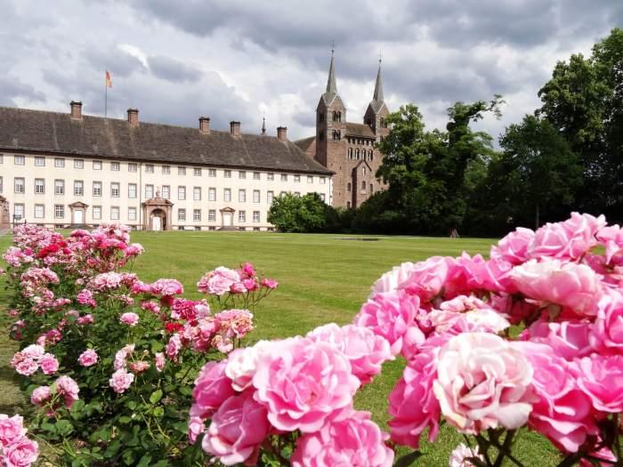 Klooster van Corvey met roze rozen op de voorgrond