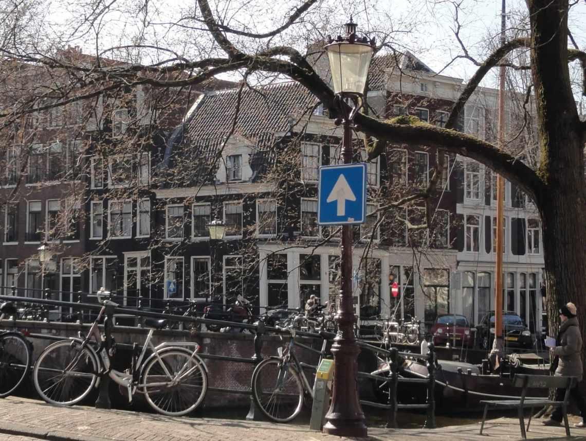 Lindeboom aan de grachtengordel met op de achtergrond Amsterdamse huisjes