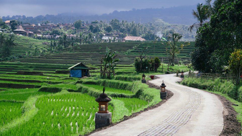 Route le long des rizières de Jatiluwih à Bali avec lanternes