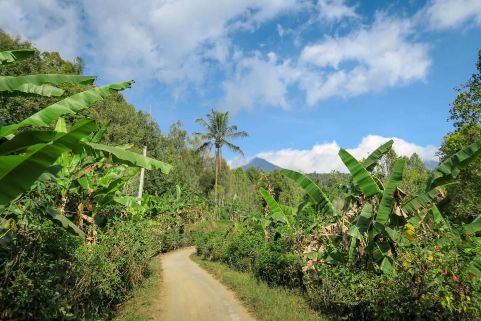 Chemin de traverse dans les alentours de Munduk