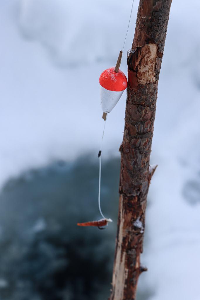 Bâton avec bouchon pour pêche sous la glace