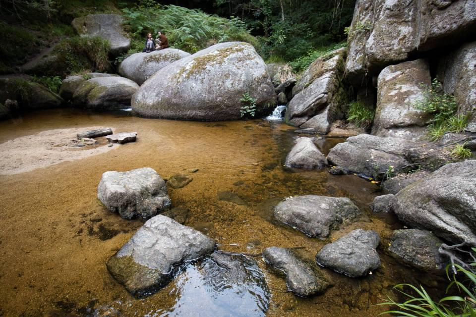 La Mare aux Sangliers dans la forêt d'Huelgoat