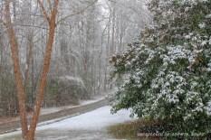 March snow 4
