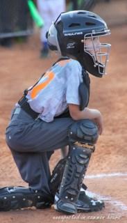 Hind catcher 3