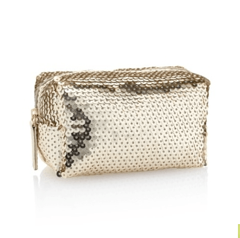 Mini Sequin Embellished Make Up Bag in 'Champagne'