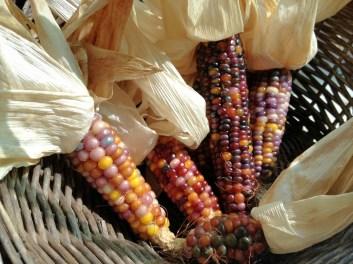 Brightly colored glass gem corn