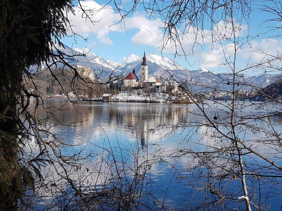 Lake Bled- view from the side of the lake opposite to the bus stop