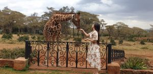 Giraffe manor- Frequently asked questions
