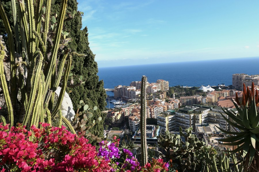 View of the harbour from the Exotic Garden of Monaco