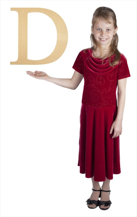 "Times New Roman 16"" Letter D"