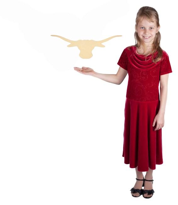 Small Texas Longhorn (20x6)