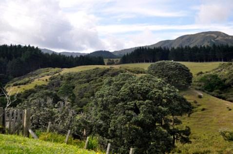 Waitete Hills