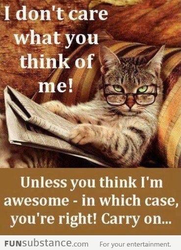 appreciation - I'm Awesome