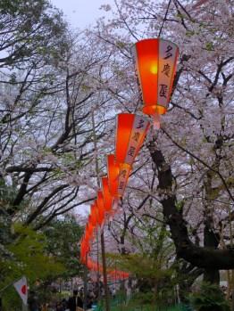 Ueno Park.