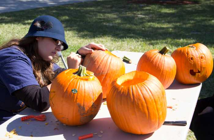 Photo by Keri Weiland  The organic gardens will compost the insides of the pumpkins, such as the one Stephanie Lebow carves above.