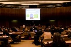UNFSS Objectives