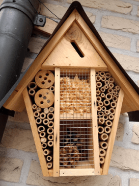 Insect hotel made by a participant to address biodiversity loss and restore the vital role of insects in biospheres.