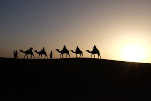 Learning From the Wise Men