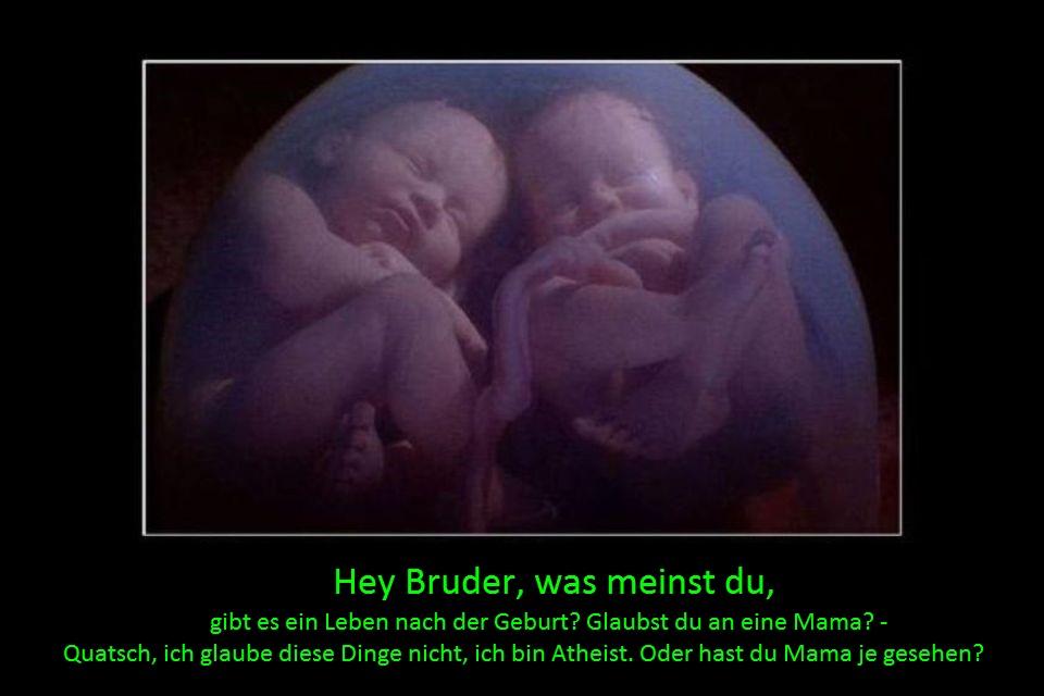 Hey Bruder